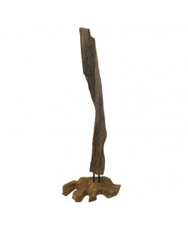 Teak Wood Root Sculpture Natural Finish Big Size