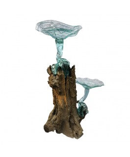 Double Giant Mushroom Glass on Teak Wood